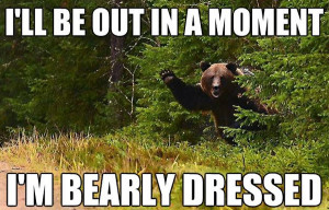"sit back cause the fun ""bearly"" started…"