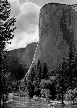 Home » Source Yosemite Sams Quotes
