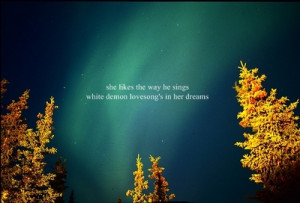 ... northern lights trees typography times new roman image quotes sayings