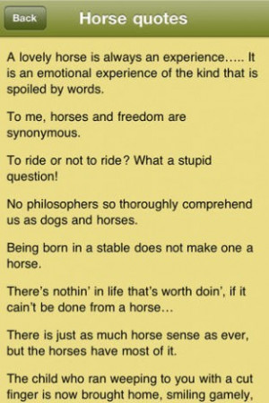 View bigger - Horse Quotes - Horsemanship Sayings for Equestrians for ...