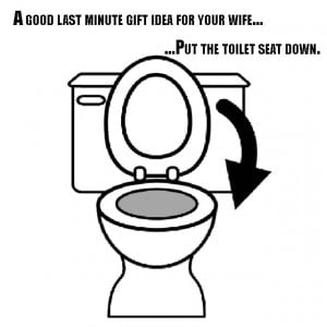 toilet seat gift idea