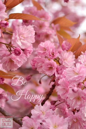 Pink spring flower photo, be happy quote, bokeh, cherry blossoms ...