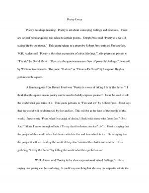 British literature essay papers