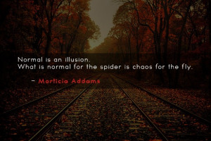 ... What is normal for the spider is chaos for the fly. ~ Morticia Addams