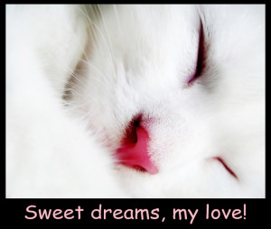 my love sweet dreams goodnight my love sweet dreams good night to my ...