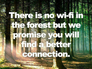 There is no wifi in the forest but we promise you will find a better ...