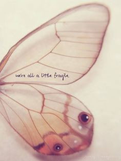 butterfly quote more tattoo ideas remember this quotes beautiful ...