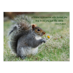 Squirrel with Daisy Friendship Quote Poster
