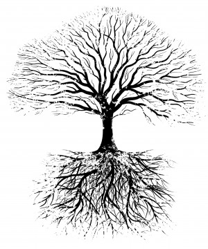 trees need roots something beneath the surface when the roots are ...