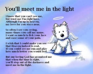 Loss Of A PetTrav'Lin Lights, Rainbows Bridges, So Sweets, Pets, Art ...