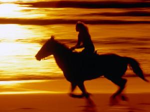 Sunset Ride California Coast - animals wallpaper image with horses