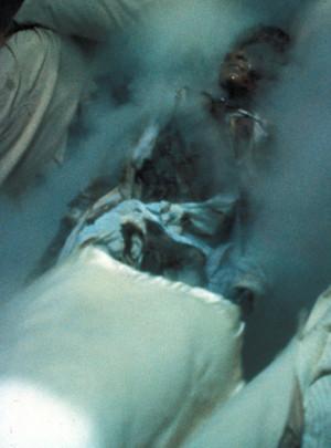 Nightmare Elm Street Allmovie