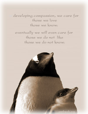 Compassion Quote picture - Developing compassion, we care for those we ...