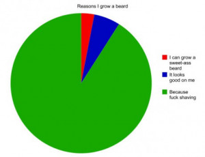 funny-picture-reasons-grow-beard