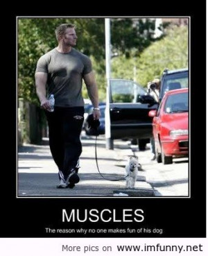 with muscles about muscles dog muscles funniest muscles funny muscles ...
