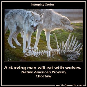Native American Wolf Quotes More native american proverbs