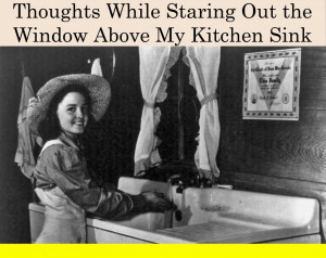 Comedy Quotes About Life And Funny Things: Thoughts While Staring Out ...