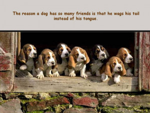 Dogs and People – Photos and Quotes for Dog Lovers, Part 4