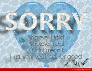 ... Did-I-Didnt-Mean-It-I-Just-Want-You-Luck-For-Good-Apology-Quote.jpg