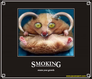 Funny Babies Smoking Weed Smoking pictures funny