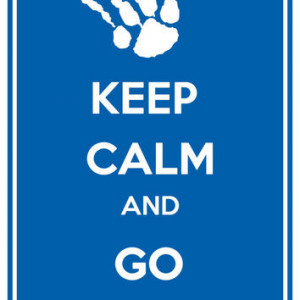 Kentucky Wildcats Keep Calm