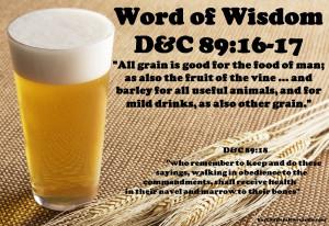 Beer Quotes HD Wallpaper 8