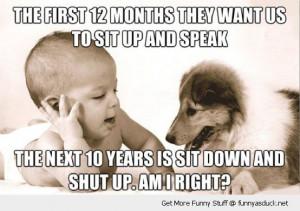 baby speaking dog animal talking sit up speak sit down shut up an ...