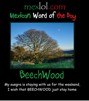 mexican word of the day quotes