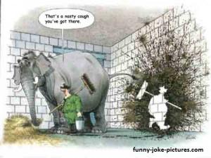 Funny Old Favourite Silly Elephant Jokes Cartoon