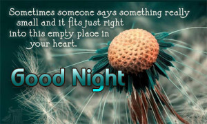 What's the best good night love sms or sweet good night text message ...