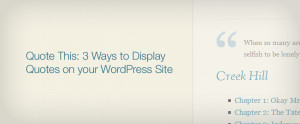 Quote This: 3 Ways to Display Quotes on your WordPress Site