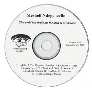 Me'Shell Ndegeocello