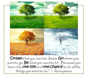 One Life - One Chance