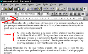 Notes on word-processing of essays
