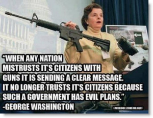 gun-control-george-washington-quote-such-a-government-has-evil-plans