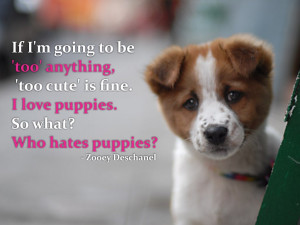 ... cute' is fine. I love puppies. So what? Who hates puppies? Zooey