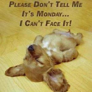 monday_morning