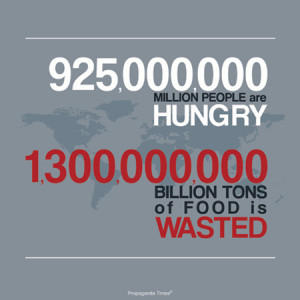 Why Haven't We Solved World Hunger Yet??