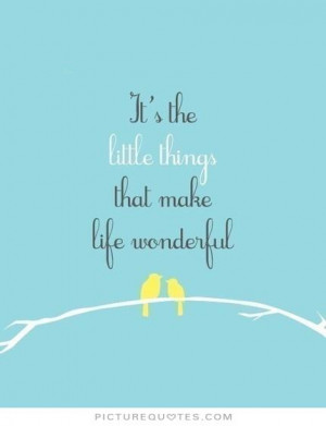 It's the little things that make life wonderful Picture Quote #1