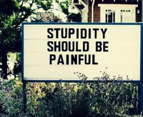 Stupidity Quotes & Sayings