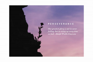 ... Dictionary: http://www.merriam-webster.com/dictionary/perseverance