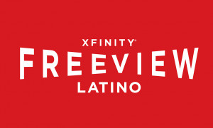 The nation's largest provider of Hispanic and multicultural ...