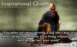 Veterinary Quotes