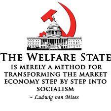 2nd amendment anti obama anti welfare t shirt large lg GOVERMENT t ...