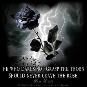 Bronte Quotes