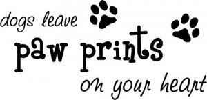 Dogs leave paw prints on your heart cute puppy wall art wall sayings ...