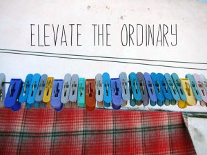 Elevate the Ordinary #quote