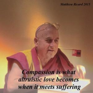 Matthieu-ricard-netty-quote-4