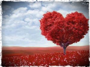 Um canto no coração