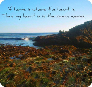 Sea Waves Quotes http://www.tumblr.com/tagged/ocean-quotes